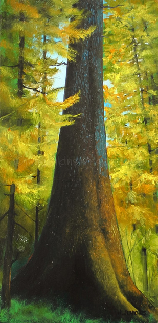 nitinat spruce tree        10x20 inches