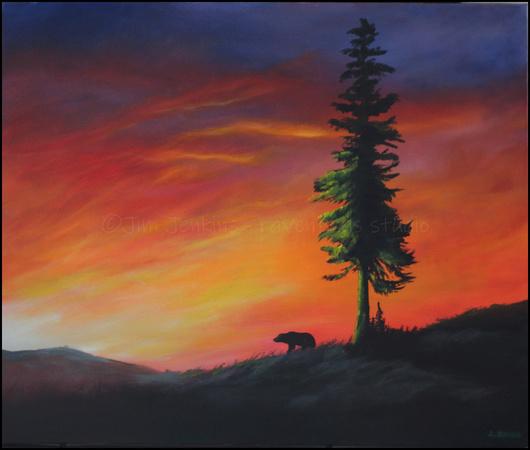 grizzly bear sunrise - 20 x 24